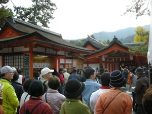 №60 21.11.15 厳島神社