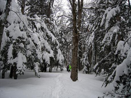 冬の上高地 120