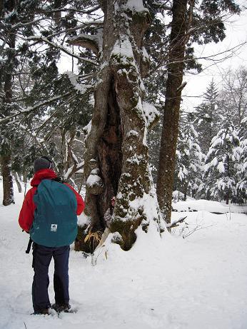 冬の上高地 166