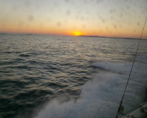 夕日を背に30ノットで帰港中