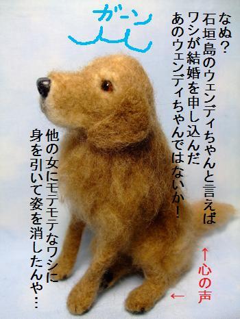 ゴン太 1