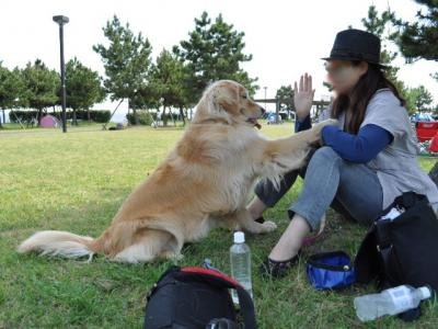 5月8日 ブログ用城南島海浜公園+002_convert_20110509133758