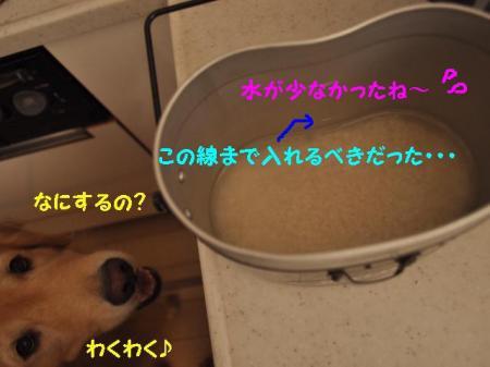 失敗~!_convert_20110816162431