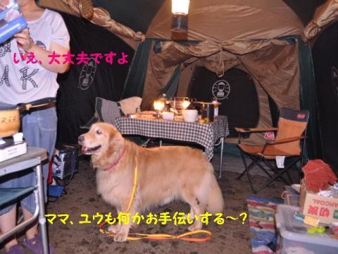 ウェルキャンプ場+020_convert_20110827153359