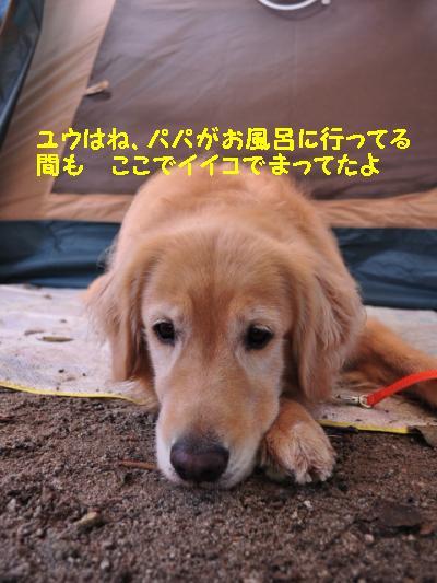 ウェルキャンプ場+017_convert_20110827154316