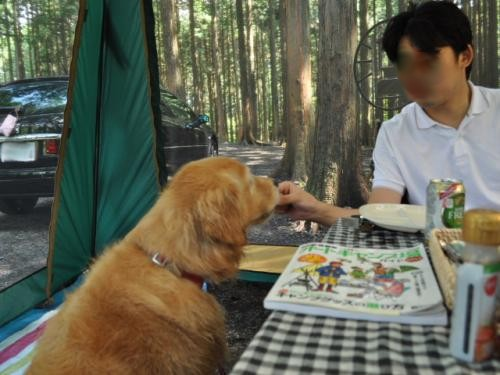 ACN西富士 デイキャンプ+(4)_convert_20110917122851