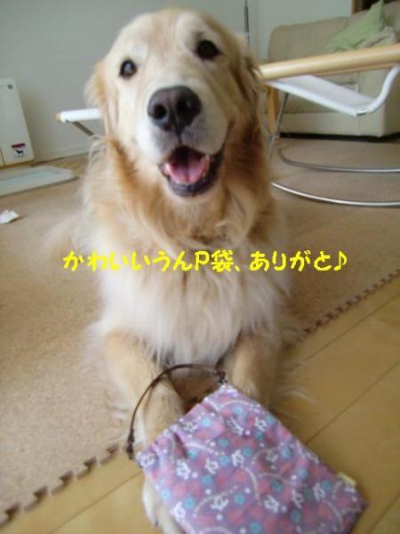 CIMG6831_convert_20110703133110.jpg