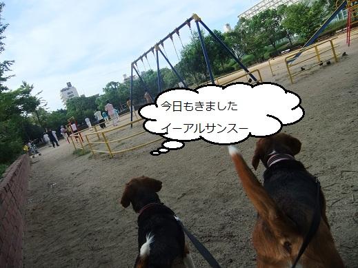 002_20100917152111.jpg