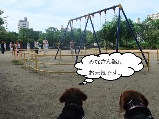 005_20100917152111.jpg