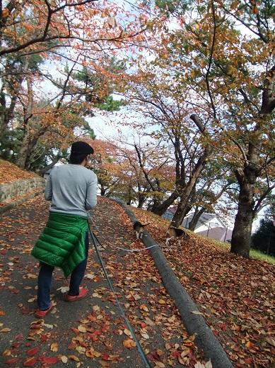 024_20101129180411.jpg