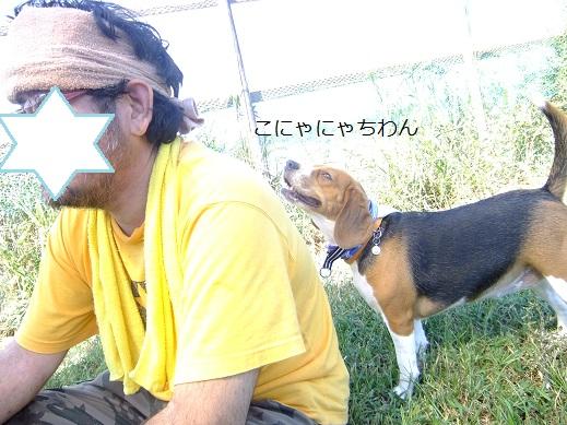 051_20100929150644.jpg