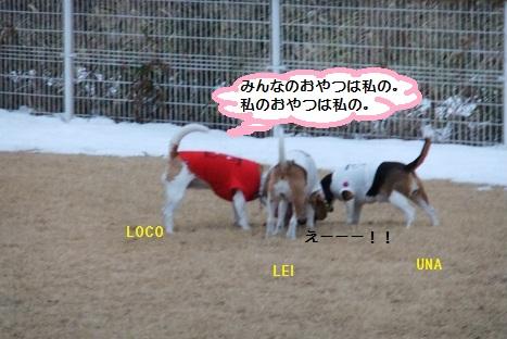 DSCF5898_20100119033002.jpg