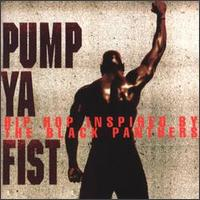 「PUMP YA FIST - HIP HOP INSPIRED BY THE BLACK PANTHERS」
