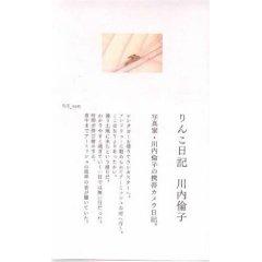 川内倫子「りんこ日記」