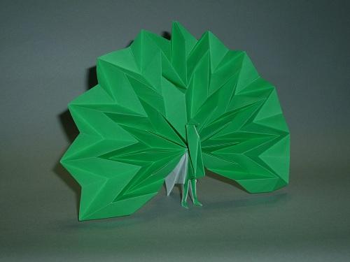 簡単 折り紙 折り紙 孔雀 折り方 : unins.blog77.fc2.com