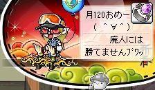 Maple111113_154048.jpg