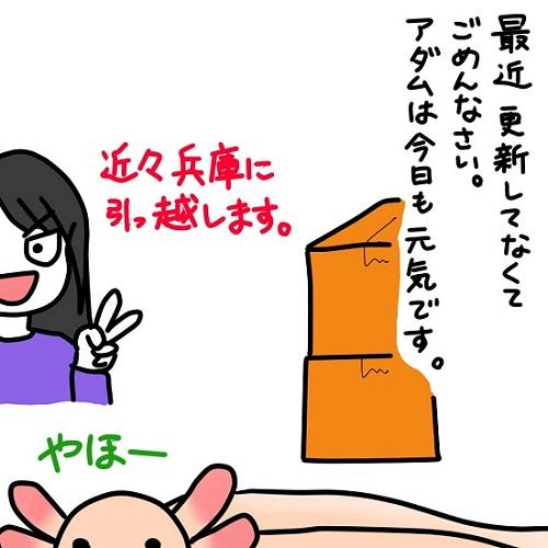 20120408近況報告