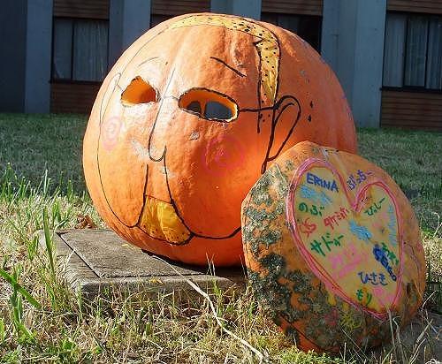 ぶっちーかぼちゃ
