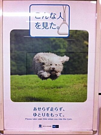 メトロの広告 (2)