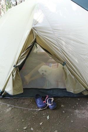 近場キャンプ (10)