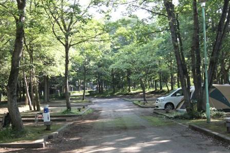 近場キャンプ 翌朝編 (3)