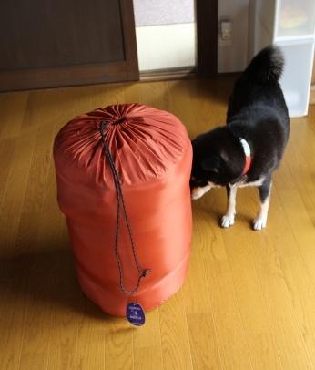 寝袋とP氏の関係 (2)