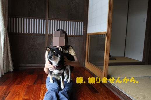 ぽんた親分観察日記 (10)