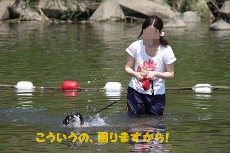 ぽんた親分観察日記 (11)