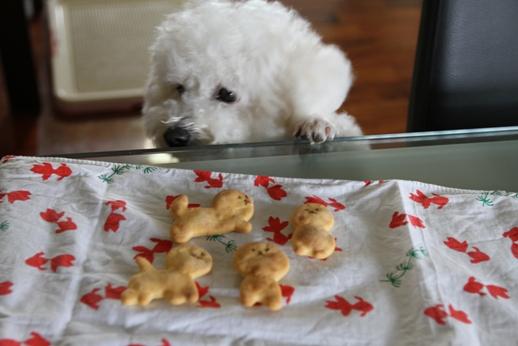 手作りクッキー型 (3)