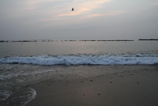 不完全燃焼の海 (11)