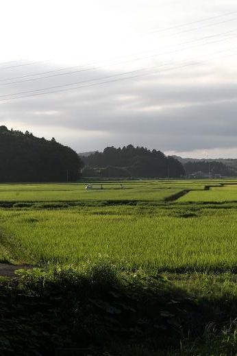 田舎散歩 (6)