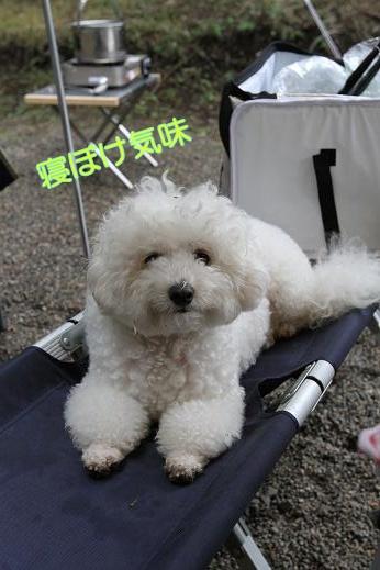 MOFRISE CAMP 2011 -翌朝編- (12)