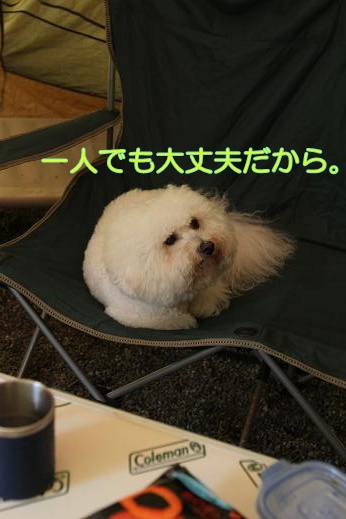MOFRISE CAMP 2011 -翌朝編- (13)