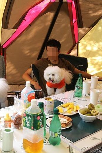 MOFRISE CAMP 2011 -翌朝編-
