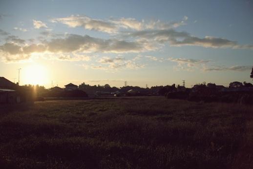 田舎を闊歩 (3)