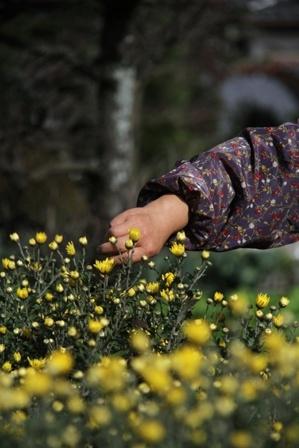 収穫祭 (12)