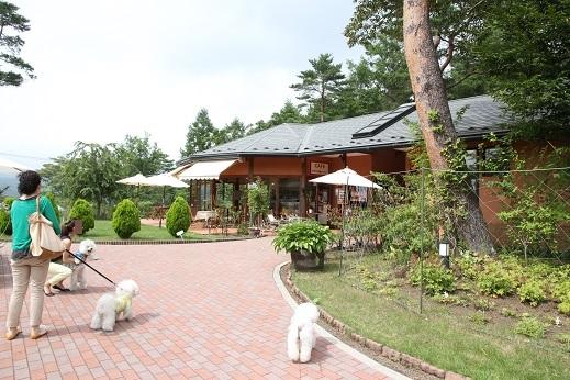 富士五湖女子旅行 2日目編 (4)