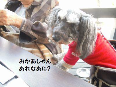 軽井沢 021