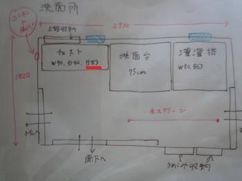P1020622_convert_20100324221335.jpg