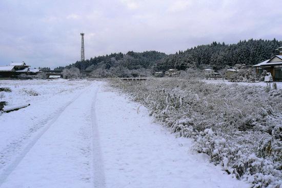 111210 雪景色1