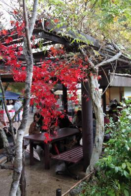 1122Arashiyama0001.jpg
