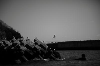 風の強い日03