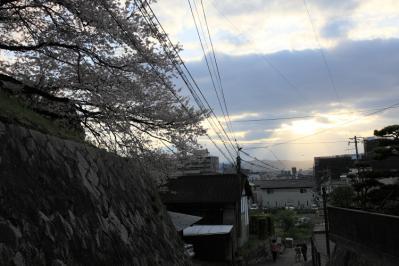 sakurayashiki10.jpg