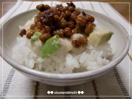 カリッと納豆とろカドネバネバ丼_1