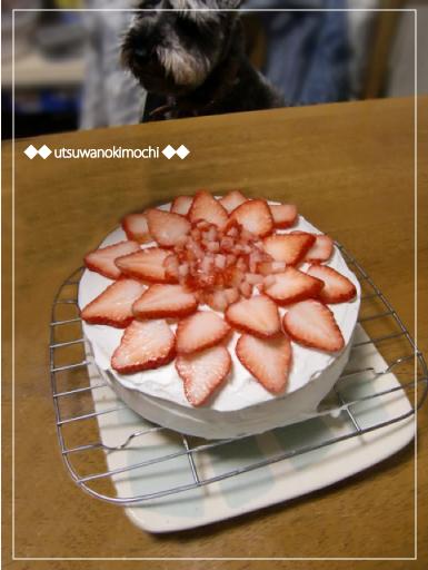 20thバースディケーキ