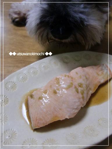 鮭の柚子胡椒ポン酢がけ