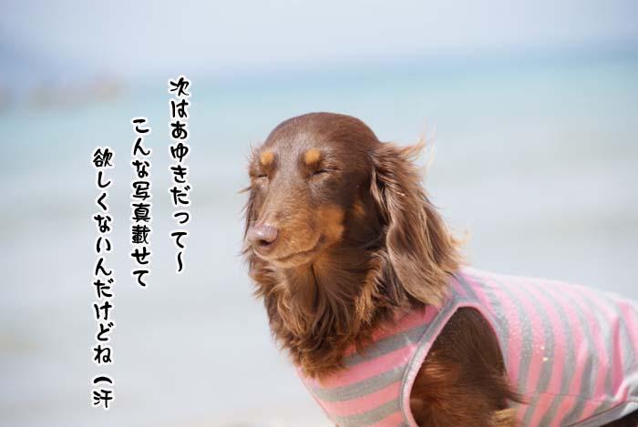 20110410_63.jpg