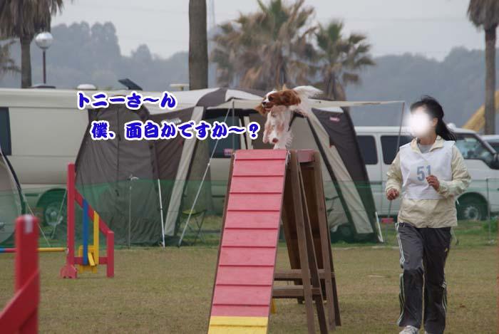 20110416_38.jpg