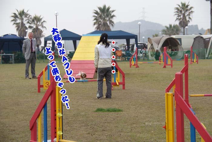 20110416_4.jpg
