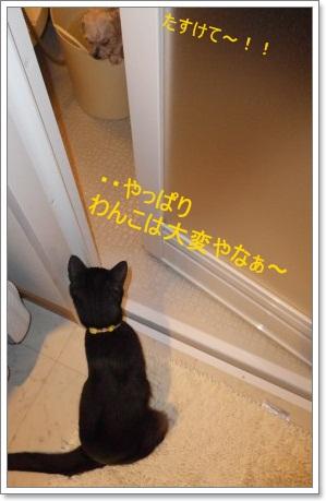 ププお風呂4